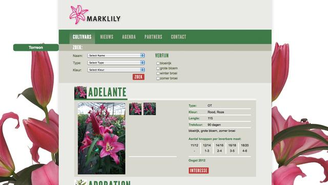 Marklily