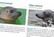Stichting De Noordzee